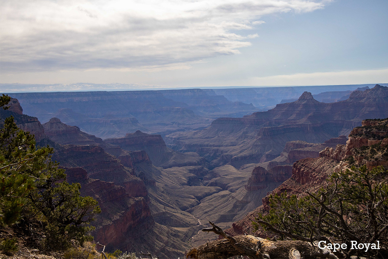 Grand Canyon North Rim Cape Royal
